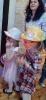 Bal karnawałowy dla dzieci 2020_5